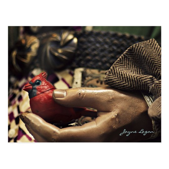 A Bird in the Hand, Postcard (Digital Colour Photo