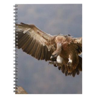 A Bird of Prey Spiral Notebook