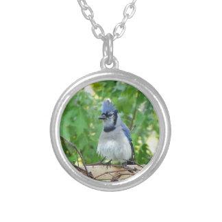 A birds eye day custom jewelry