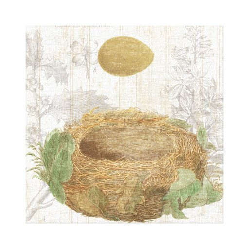 A Bird's Nest with a Brown Egg Gallery Wrapped Canvas