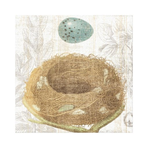 A Bird's Nest with a Decorative Egg Gallery Wrap Canvas