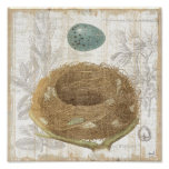 A Bird's Nest with a Decorative Egg Poster