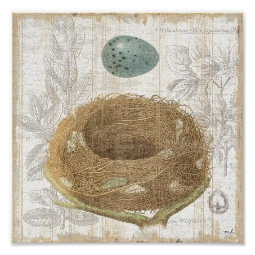 A Bird's Nest with a Decorative Egg Posters