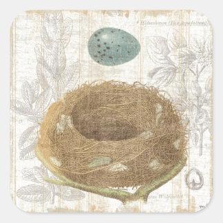 A Bird's Nest with a Decorative Egg Square Sticker