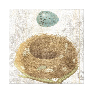 A Bird's Nest with a Decorative Egg Stretched Canvas Print