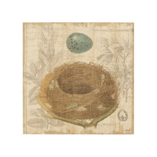 A Bird's Nest with a Decorative Egg Wood Canvases