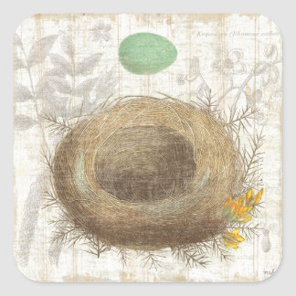 A Bird's Nest with a Green Egg Square Sticker
