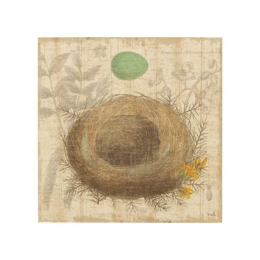 A Bird's Nest with a Green Egg Wood Prints