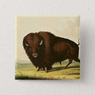 A Bison, c.1832 15 Cm Square Badge