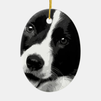 A black and white Border collie Christmas Ornament