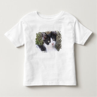 A black and white cat kitten in the garden. toddler T-Shirt