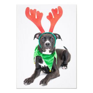 A black and white Labrador Retriever/Pit Bull 13 Cm X 18 Cm Invitation Card