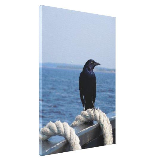 A Black Bird on the Ferry Canvas Print