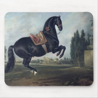 A black horse performing the Courbette Mouse Mat