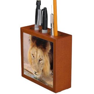 A Black Maned Lion at a waterhole Desk Organiser