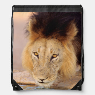 A Black Maned Lion at a waterhole Drawstring Bag
