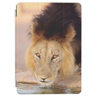 A Black Maned Lion at a waterhole iPad Air Cover