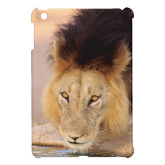 A Black Maned Lion at a waterhole iPad Mini Cover