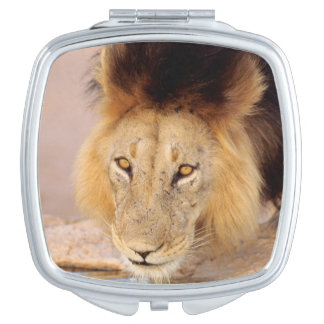 A Black Maned Lion at a waterhole Travel Mirror