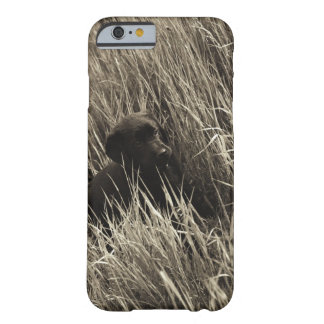 A black puppy in a meadow. barely there iPhone 6 case