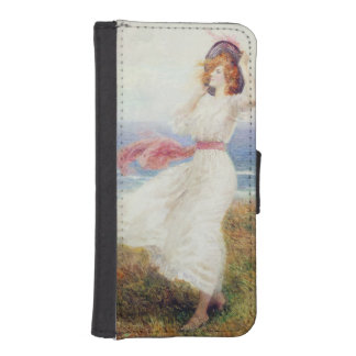 A Blow on the Cliffs iPhone 5 Wallet Cases