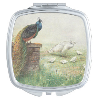 A Blue Peacock and white peahen with chicks Compact Mirrors