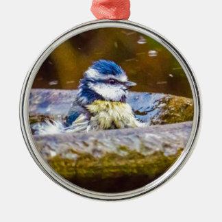A Blue Tit in the Birdbath Silver-Colored Round Decoration