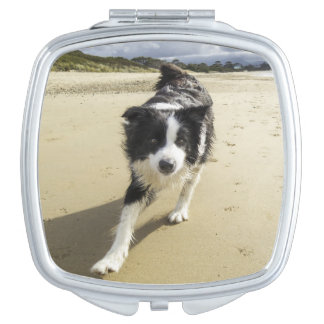 A Border Collie Dog Running On The Beach Compact Mirror