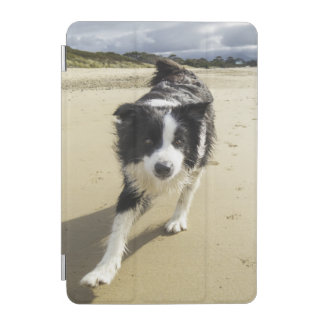 A Border Collie Dog Running On The Beach iPad Mini Cover