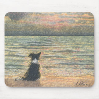 A Border Collie dog says hello to the morning Mouse Mat