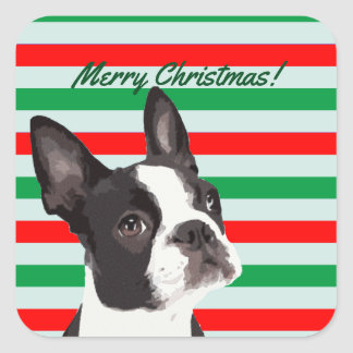 A Boston Terrier Merry Christmas Square Sticker