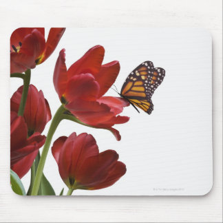 a bouquet of red tulips is visited by a monarch mouse mat