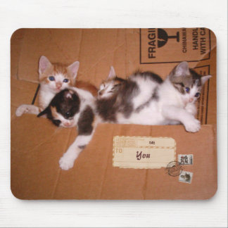 A Box of Kittens (customizable) Mouse Pads