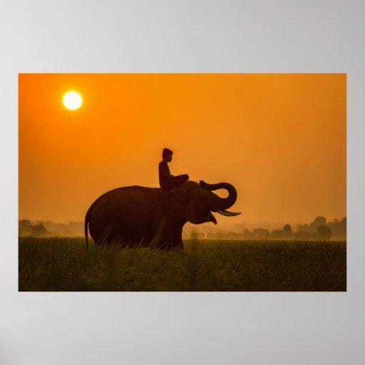 A boy, an elephant and the sun poster