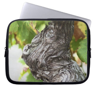 A branch of a very old vine with gnarled laptop sleeve