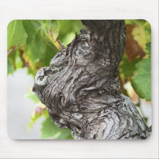 A branch of a very old vine with gnarled mouse mat