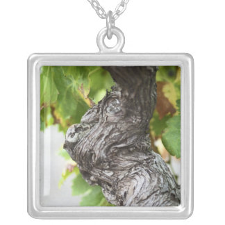 A branch of a very old vine with gnarled silver plated necklace