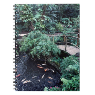 A bridge over a goldfish pond surrounded by notebooks