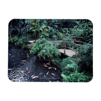 A bridge over a goldfish pond surrounded by rectangular photo magnet