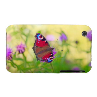 A brightly coloured Peacock butterfly is Case-Mate iPhone 3 Cases