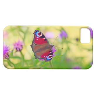 A brightly coloured Peacock butterfly is iPhone 5 Cover