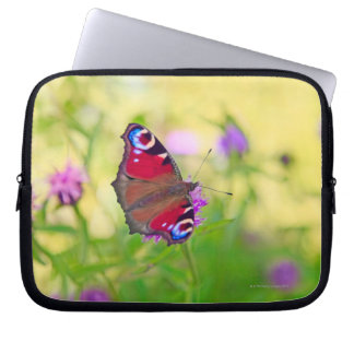 A brightly coloured Peacock butterfly is Laptop Sleeve
