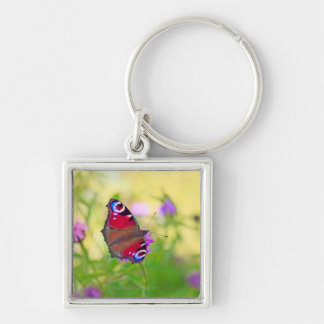 A brightly coloured Peacock butterfly is Silver-Colored Square Key Ring