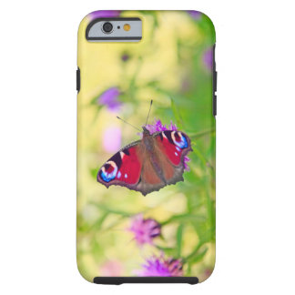 A brightly coloured Peacock butterfly is Tough iPhone 6 Case