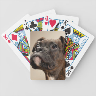 A Brindle Boxer puppy looking up curiously. Bicycle Playing Cards