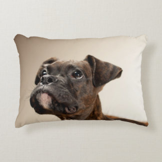 A Brindle Boxer puppy looking up curiously. Decorative Cushion