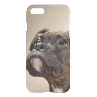 A Brindle Boxer puppy looking up curiously. iPhone 8/7 Case