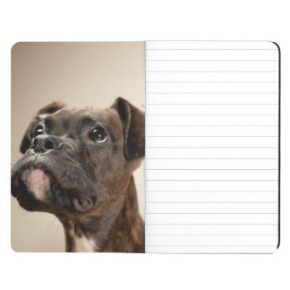 A Brindle Boxer puppy looking up curiously. Journal