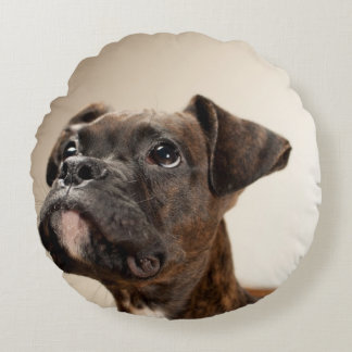 A Brindle Boxer puppy looking up curiously. Round Cushion