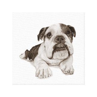A Brindle Bulldog Puppy Drawing Canvas Print